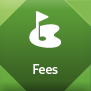 Fees_over