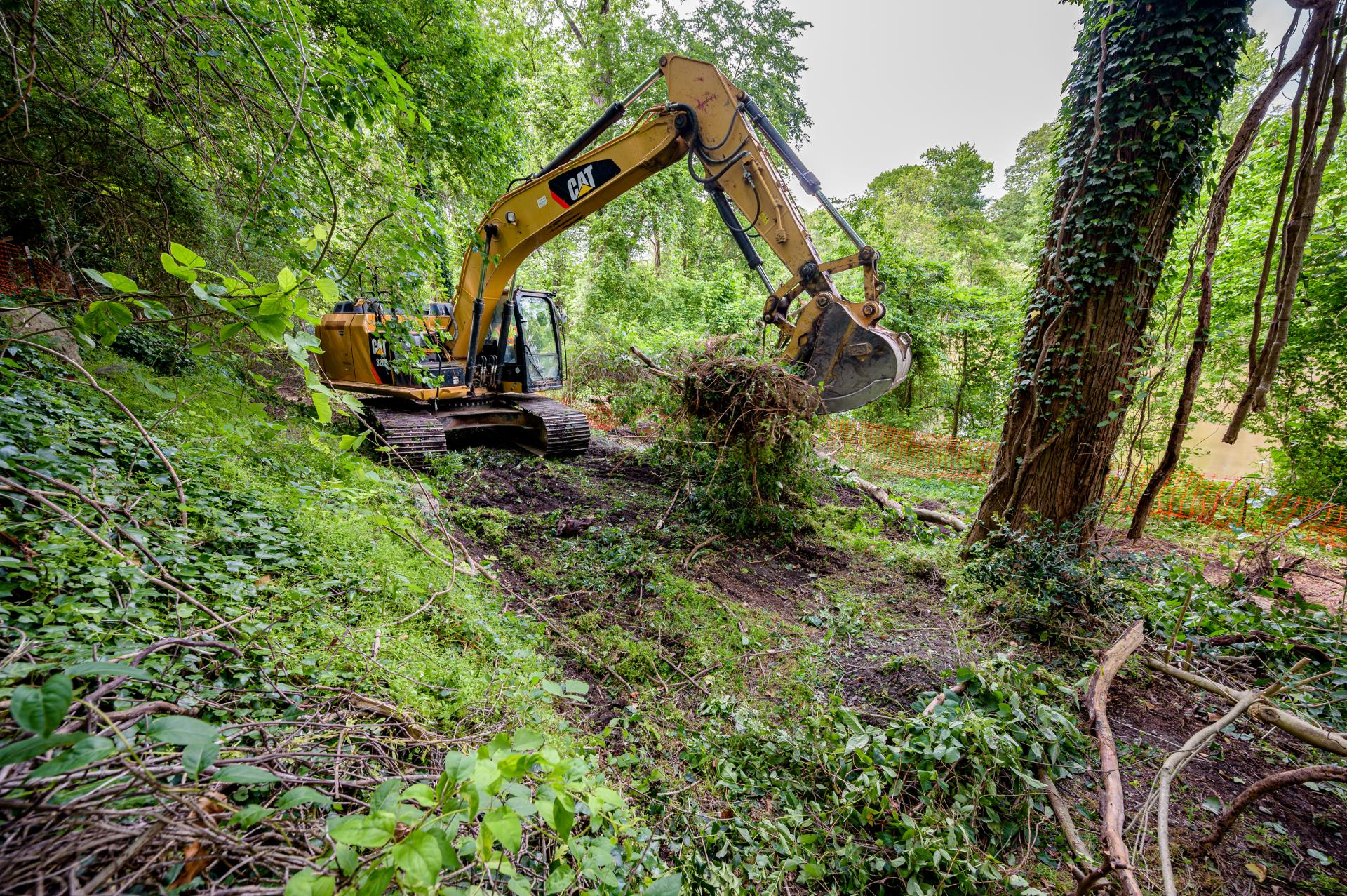 Clearing Begins for New Phase of South Tar River Greenway
