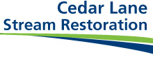 Cedar Lane Stream Restoration